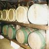 The cider cellar