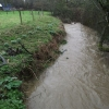 River Char in Flood with Snowdrops on the Bank