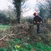 Cutting a hedge