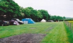Our camp site in Dorset