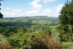 Part of the Marshwood Vale