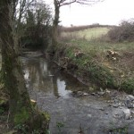 The River Char after copsing