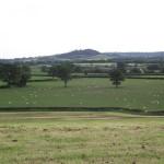 The Marshwood Vale