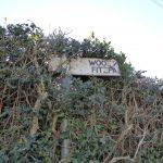 FINGER POST RESTORATION AND REPAIR