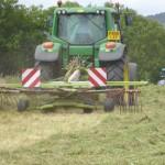 Grass Cutting, Dorset