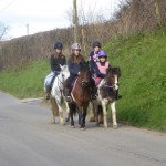 BIDLAKE FARM HORSE RIDING
