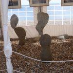 Lyme Regis Fossil Festival Tenth Anniversary