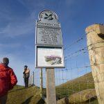 GEOLOGY TRIP TO EGGARDON HILL